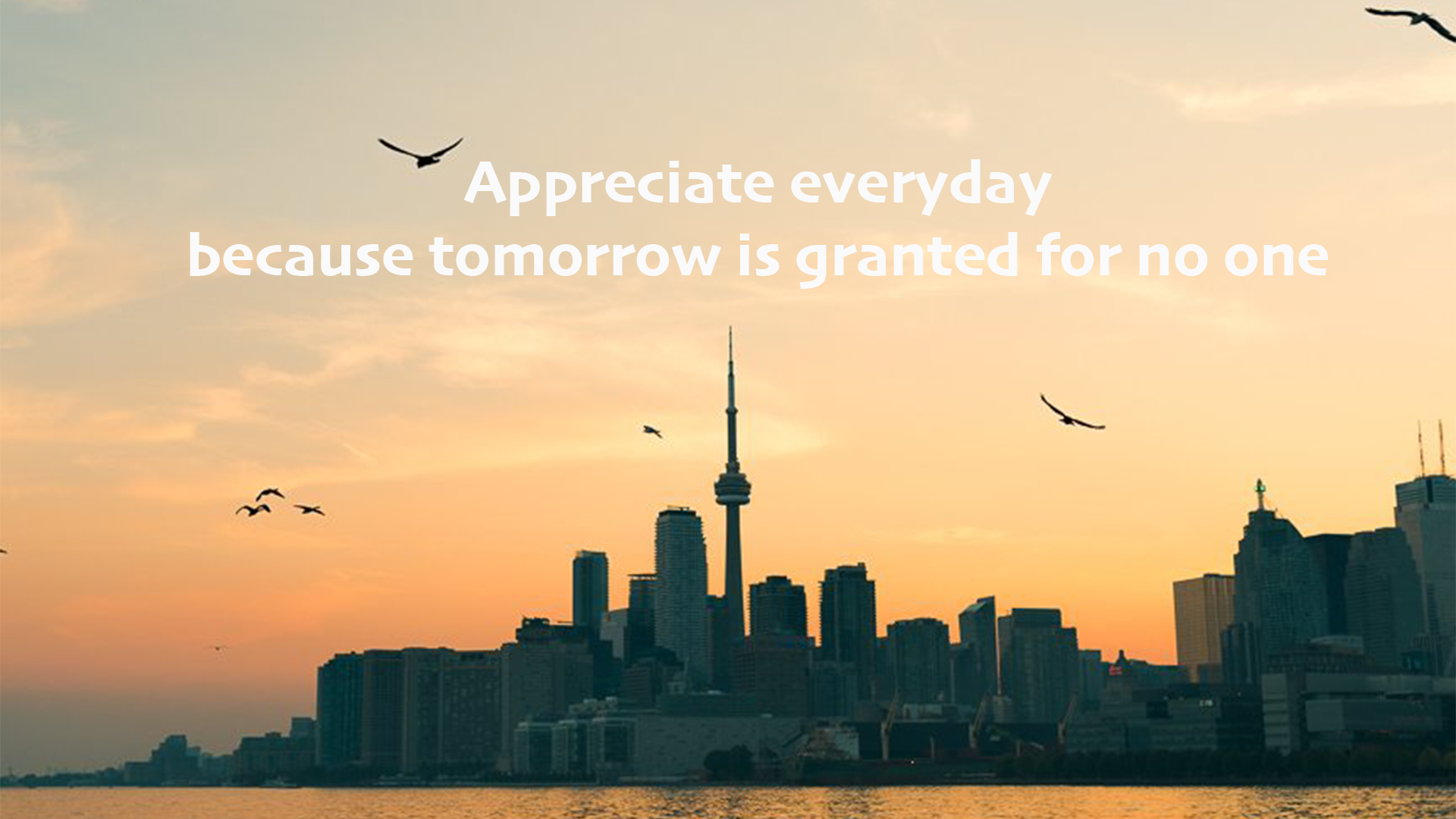 Appreciate Everyday Because Tomorrow Is Granted For No One